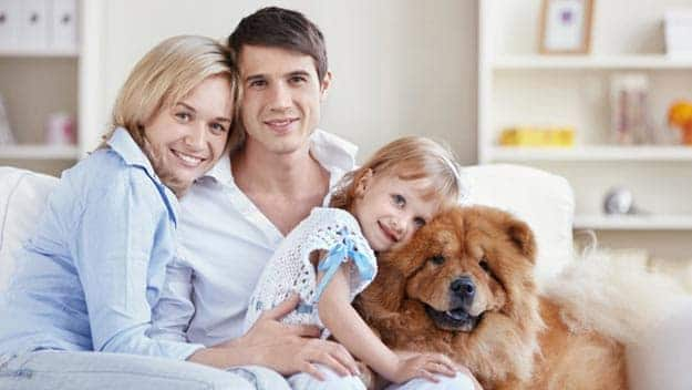Wills & Trusts dog-young-family Direct Wills Skelmersdale